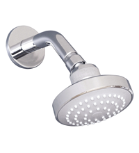 Raymor Avon Single Function Shower Rose